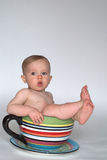 A Cup of Baby Royalty Free Stock Photos