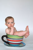 A Cup of Baby Royalty Free Stock Photography