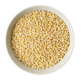 Cup of  barley Stock Image