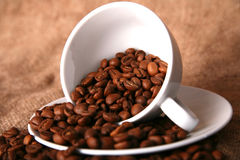 Cup beans of coffee Royalty Free Stock Images
