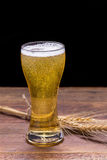 Cup of beer on wooden table. Royalty Free Stock Photo