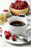 Cup of berry tea Stock Images