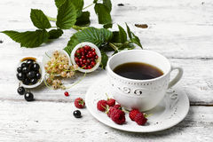 Cup of berry tea Stock Photo