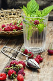 Cup of berry tea Stock Photography