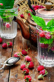 Cup of berry tea Royalty Free Stock Photos