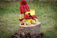 Cup of beverage with woolen cap wrapped scarf on wooden stump Stock Photography