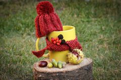 Cup of beverage with woolen cap wrapped scarf on wooden stump Stock Images