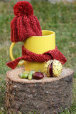 Cup of beverage with woolen cap wrapped scarf on wooden stump Royalty Free Stock Photography
