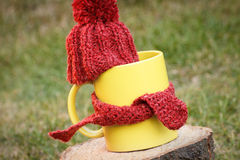 Cup of beverage with woolen cap wrapped scarf on wooden stump Royalty Free Stock Image