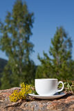 Cup on big stone over nature background Stock Photography