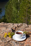 Cup on big stone over nature background Stock Images