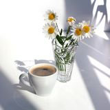 A cup of black coffee with foam, a bouquet of white camomile flowers in a crystal vase with water on a white table in the sunlight stock photo