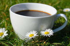 Cup of black coffee in the garden Royalty Free Stock Photo