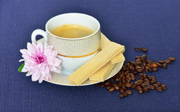 Cup of black coffee, waffles, coffee beans Royalty Free Stock Photos