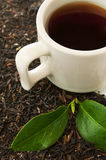 Cup of black and dry leaves Stock Photography