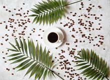 Cup of black espresso on a white concrete background with scattered coffee beans and palm branches. Rest in warm Royalty Free Stock Images