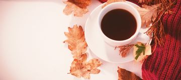 Cup of black tea with autumn leaves and woolen cloth. On white background Stock Photos