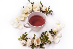 Cup of black tea with white flowers rose hips on a white background Royalty Free Stock Photos