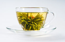 Cup with blooming flower  tea. Cup with blooming flower green tea Royalty Free Stock Photos