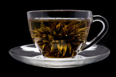 Cup with blooming flower tea Stock Photo