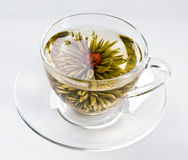 Cup with blooming flower tea. Cup with blooming flower green tea Stock Photography