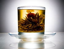 Cup with blooming flower tea. Cup with blooming flower green tea Stock Photo