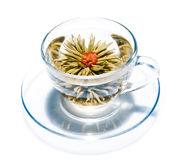 Cup with blooming flower tea. Cup with blooming flower green tea Stock Image