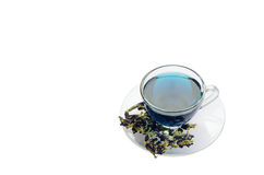 Cup of blue flower tea on white background Stock Image