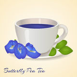 Cup of Blue tea with Butterfly Pea flowers and leaves  on orange background. Blue Pea Tea. Clitoria Ternatea. Vector illustration. Healthy drinks Royalty Free Stock Images