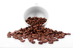Cup with brown coffee bean Stock Images