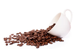 Cup with brown coffee bean Stock Image