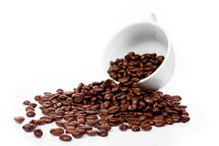Cup with brown coffee bean Stock Photography