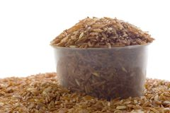 Cup of brown rice grain Royalty Free Stock Images
