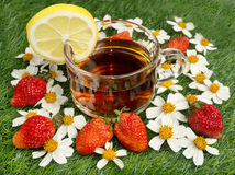 Cup of brown tea. Surrounded by flowers and strawberries stock photos