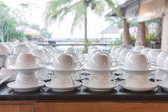 Cup for buffets. Cups for coffee and tea for breakfast Royalty Free Stock Photography