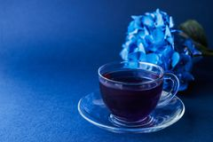 Cup of butterfly pea tea Royalty Free Stock Photography