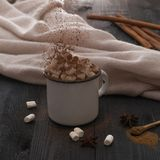 Cup of cacao with marshmallow and cinnamon anis christmas winter cozy. Broun stock photography