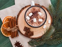 Cup of cacao with marshmallow winter Christmas tree royalty free stock photos