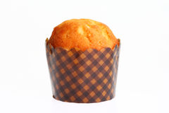 Cup-cake Stock Images