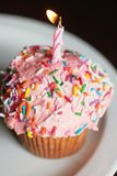 Cup cake Royalty Free Stock Images