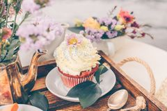 Cup Cake on beautiful wooden tray with flowers. Spring mood still life photo for holiday design Stock Image