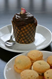 Cup Cake and Cookies. Afternoon tea with cookies and a cup cake Royalty Free Stock Photography