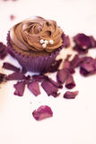 Cup cake dessert in wedding party Stock Image