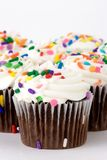 Cup cakes. Bunch of chocolate cup cakes with white frosting Royalty Free Stock Photo
