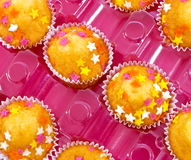 little cakes Royalty Free Stock Photo