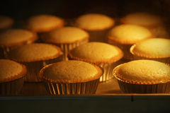 Cup cakes baking in oven Royalty Free Stock Photo