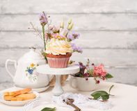 Cup cakes with cream cheese topping on beautiful wooden cake sta. Nd with flowers and wooden background behind it, spring mood still life photo for holiday Royalty Free Stock Image