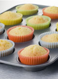 Cup Cakes in a Cup Cake Tray. Close up of Cup Cakes in a Cup Cake Tray Royalty Free Stock Image