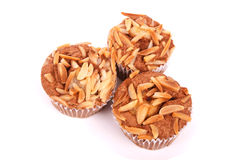 Cup cakes with nuts. Three cup cakes with broken almond nuts on top Royalty Free Stock Photos