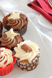 Cup Cakes. This photo shows some delicious looking cup cakes on a white plate Royalty Free Stock Photos